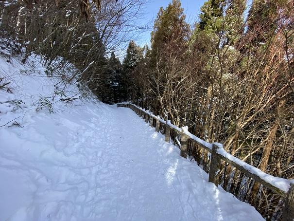 石鎚スキー場の雪道