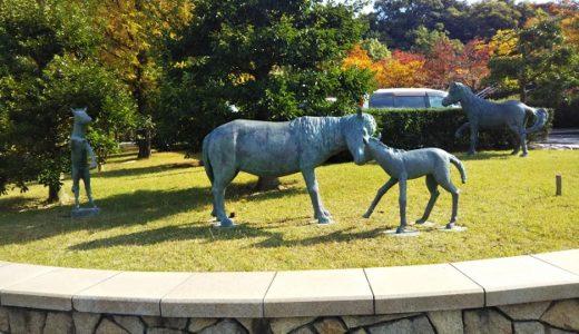 のまうまハイランド 乗馬や無料で遊べる遊具や動物と触れ合える場所 西条市