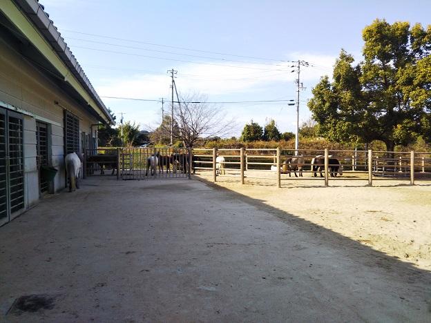 第1放牧場