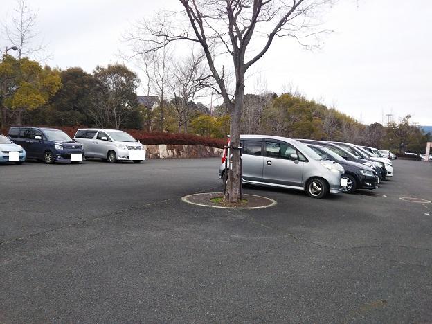 アイスランド津山 駐車場