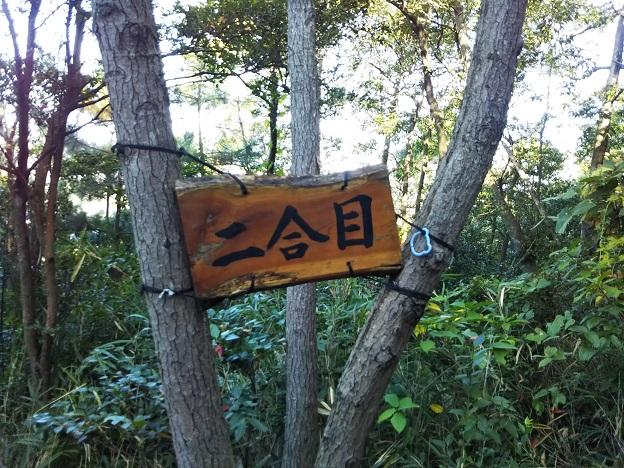 飯野山登山2合目