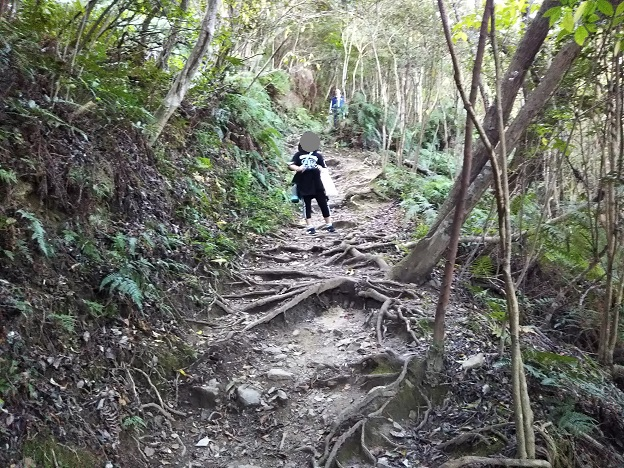 飯野山登山 7合目前