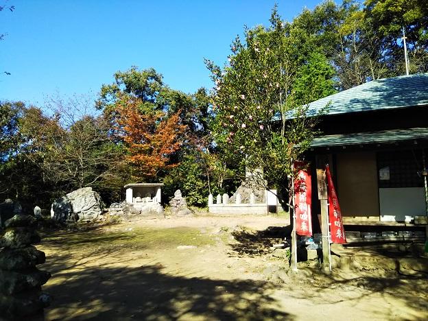 飯野山 山頂2