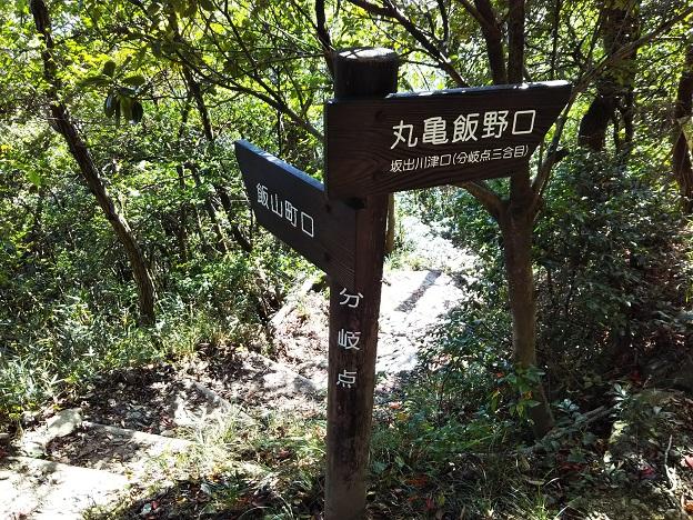 飯野山登山 分かれ道