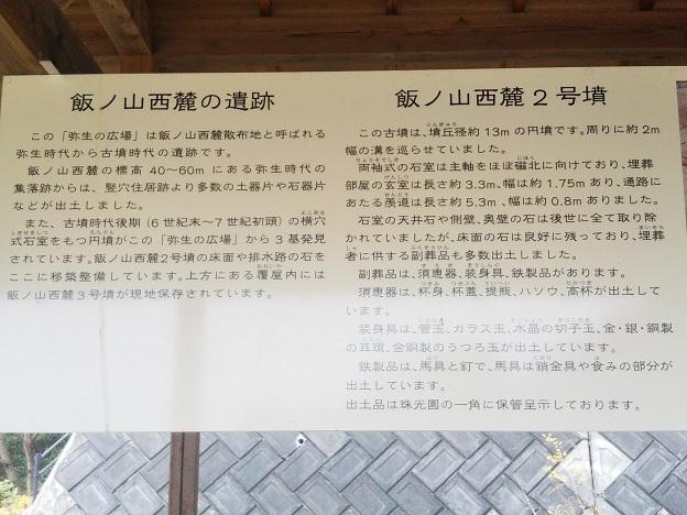 飯野山 遺跡3
