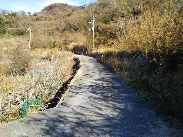 男木島灯台への遊歩道