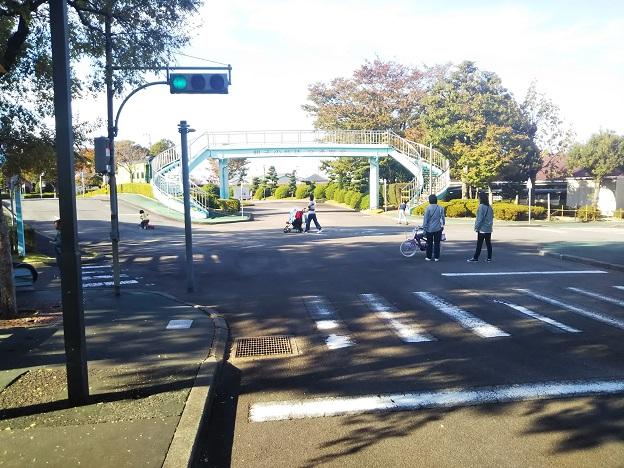 今治交通公園青の信号機