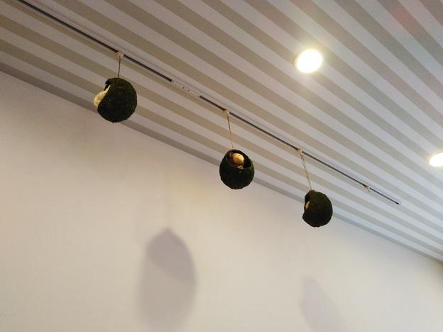 くまカフェ 天井