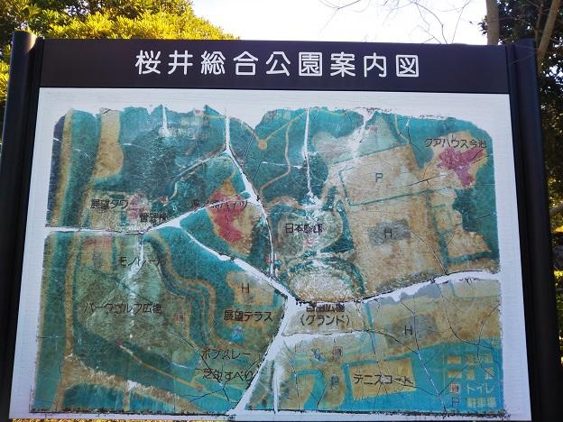 桜井総合公園 案内図