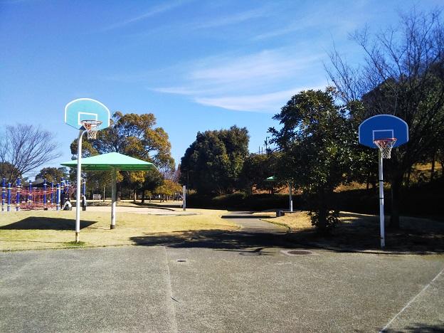 桜井総合公園 バスケットゴール