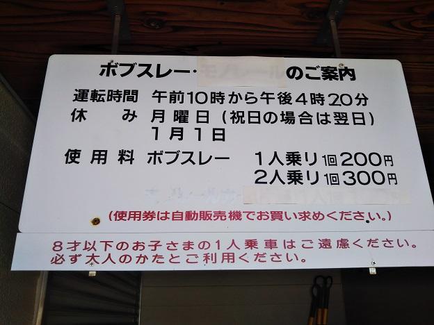 桜井総合公園 ボブスレー1