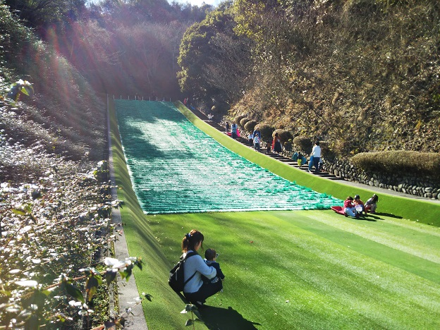 朝倉緑のふるさと公園 そり1