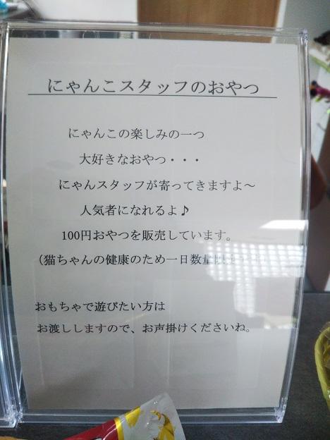 森の猫 Pato's Cafe(パトズカフェ)おやつ