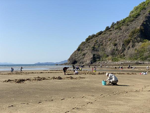 有明ふれあい海岸マテ貝掘り潮干狩り