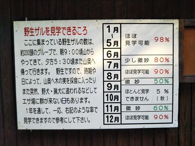 淡路島モンキーセンター サルの見学出来る時期