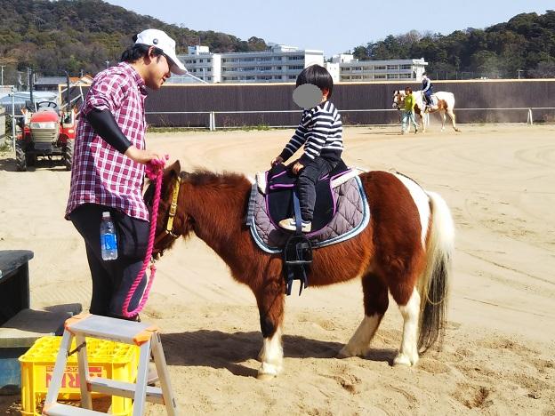 有明浜ホースパーク 乗馬体験4