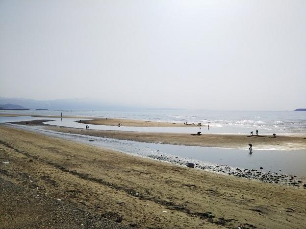 有明ふれあい海岸 海岸
