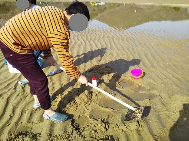 有明ふれあい海岸 砂を掘る