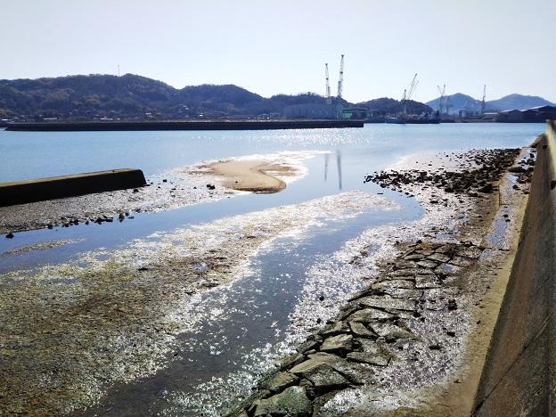 マテ貝が取れる川の河口