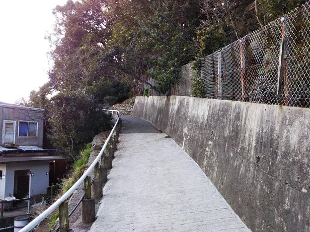 淡路島モンキーセンター サル山への道