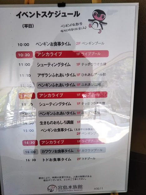 宮島水族館 イベントスケジュール