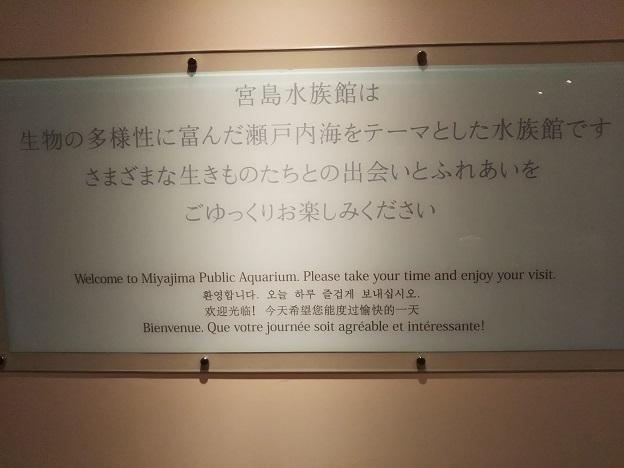 宮島水族館 テーマ