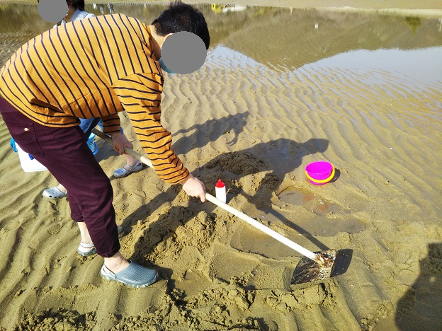 鋤簾で砂の表面を切り落とす