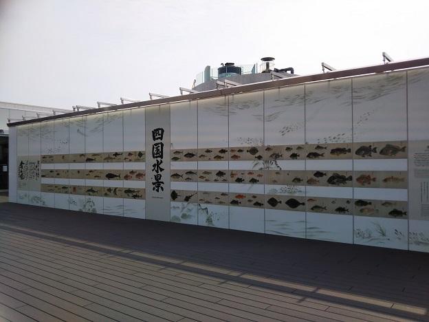 四国水族館 四国水景
