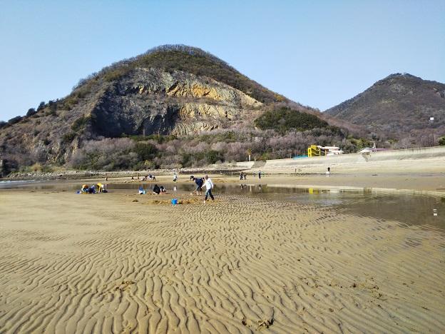 マテ貝が取れる海水浴場
