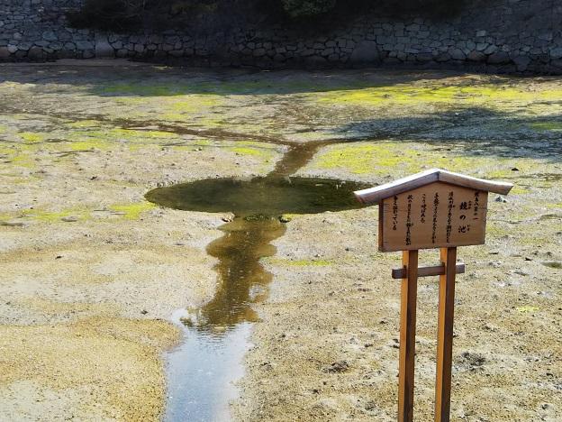 鏡の池 厳島神社