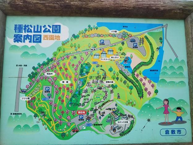 種松山公園西園地 案内図
