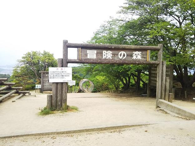 種松山公園西園地 冒険の森入口