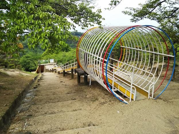 種松山公園西園地 冒険の森 すべり台1