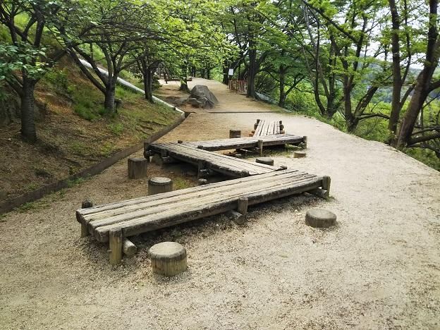 種松山公園西園地 冒険の森松の木渡り