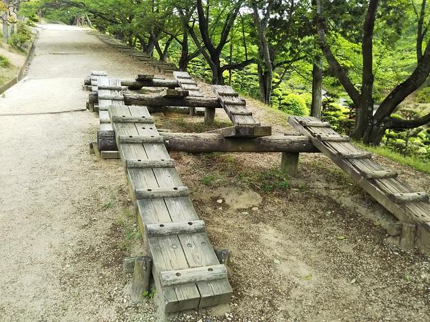 種松山公園西園地 冒険の森 斜め歩き