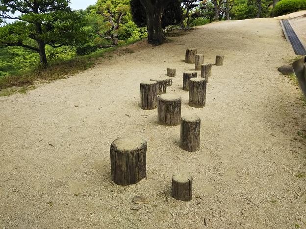 種松山公園西園地 冒険の森 丸太ステップ
