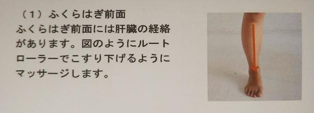 ルートルーラー経絡マッサージ 1