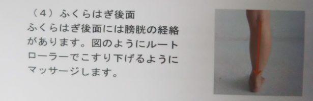 ルートルーラー 経絡をマッサージ 4