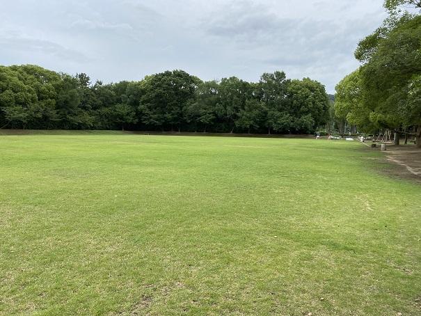 番の州公園 芝生運動広場