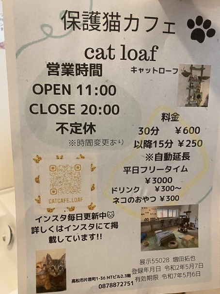 cat loaf(キャットローフ) 案内