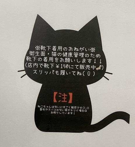 cat loaf(キャットローフ)靴下着用