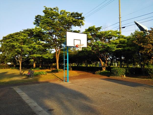 堀江公園バスケットゴール