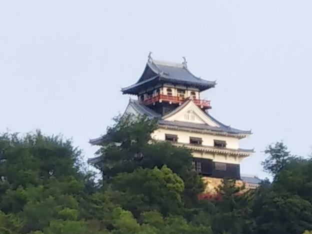 川之江城城山公園