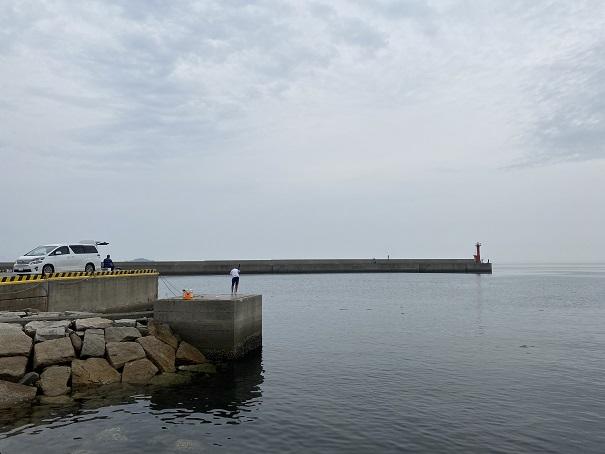 津田港釣り