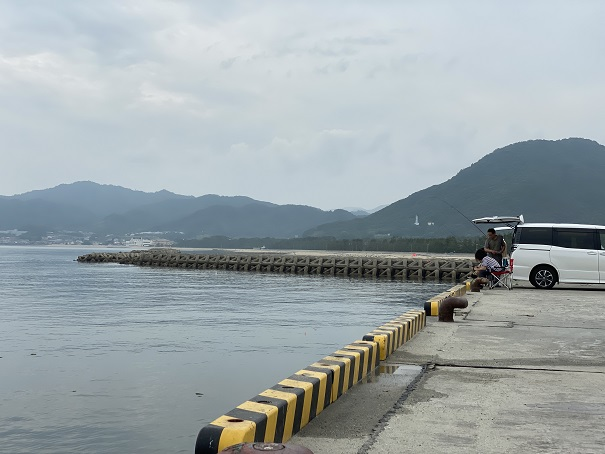 津田港岸壁で釣り