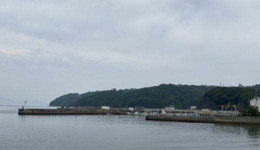 小田浦漁港でアジやサバやイワシのサビキ釣り さぬき市