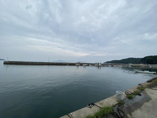 小田浦漁港は岸壁と防波堤