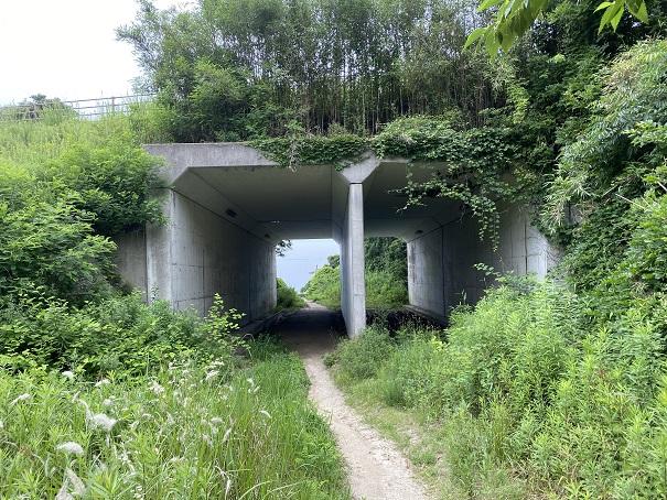 海釣り公園跡地トンネル