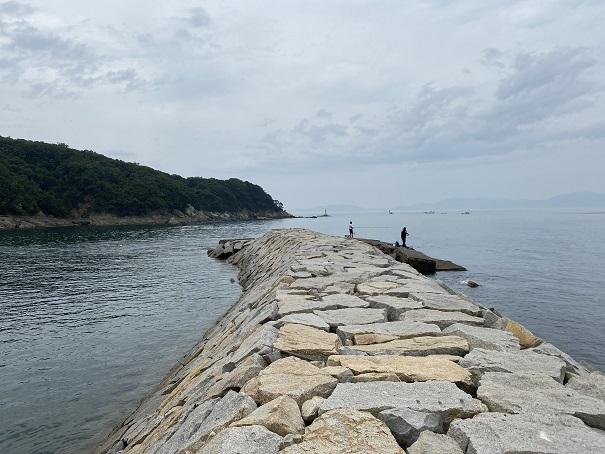 海釣り公園跡地サビキ釣り