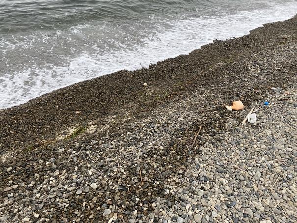 潮越海岸石ころだらけ